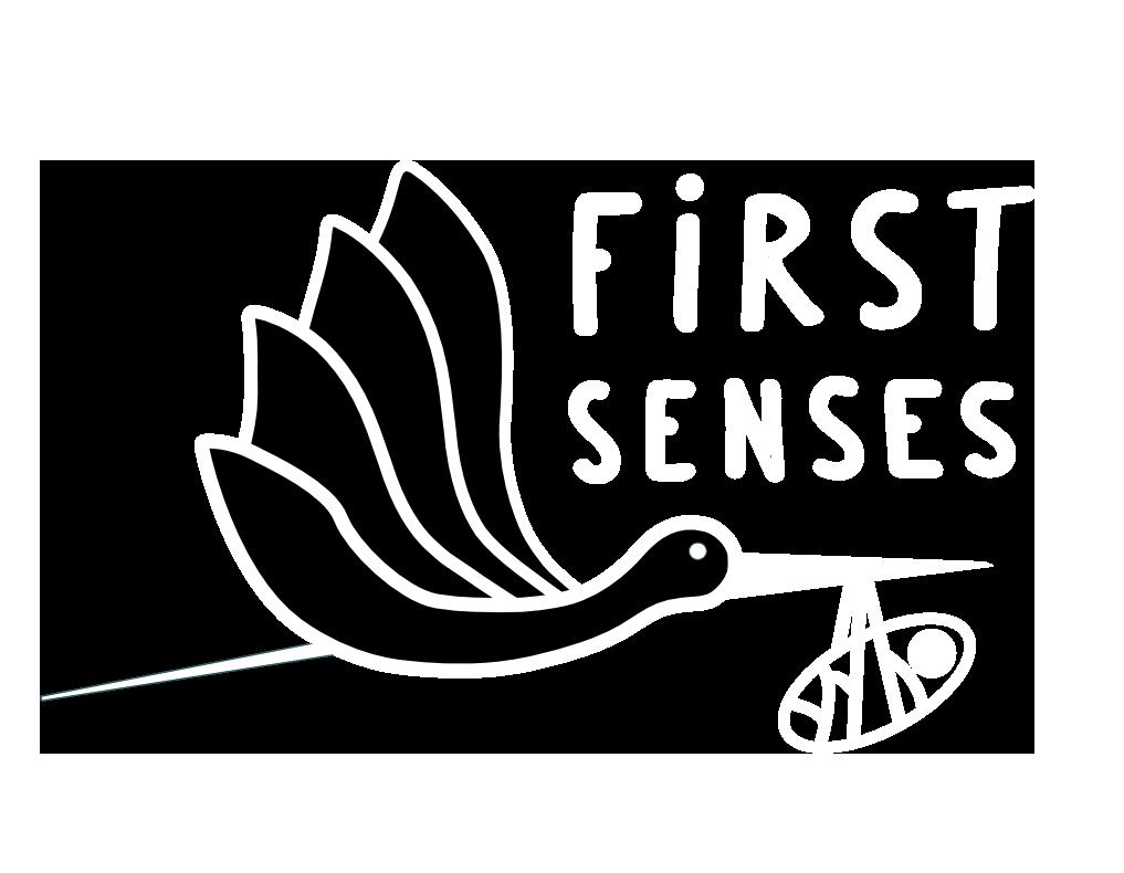 First Senses
