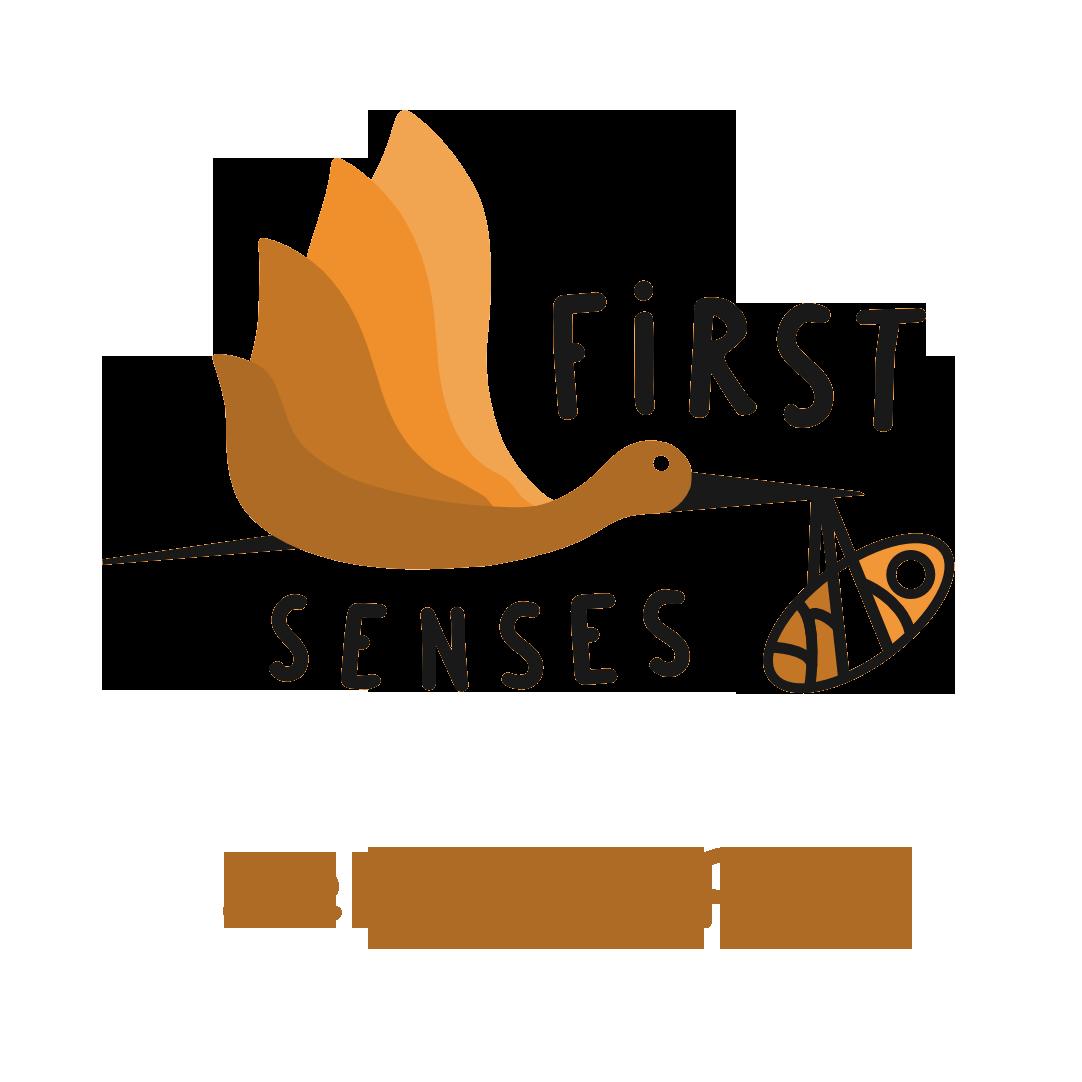 Sensory Play Course