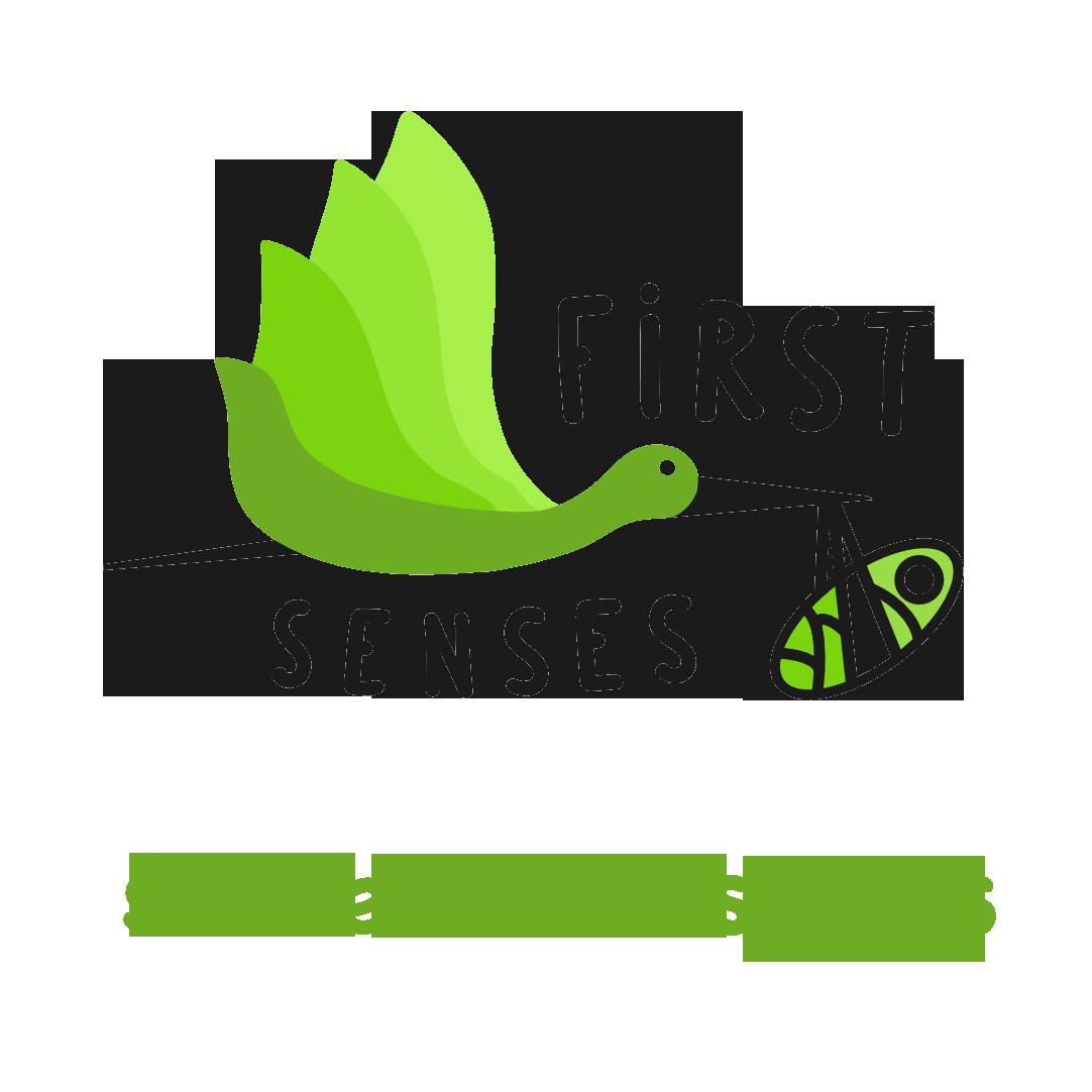 Slime Workshops