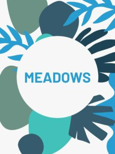 Meadows Cover Event First Senses