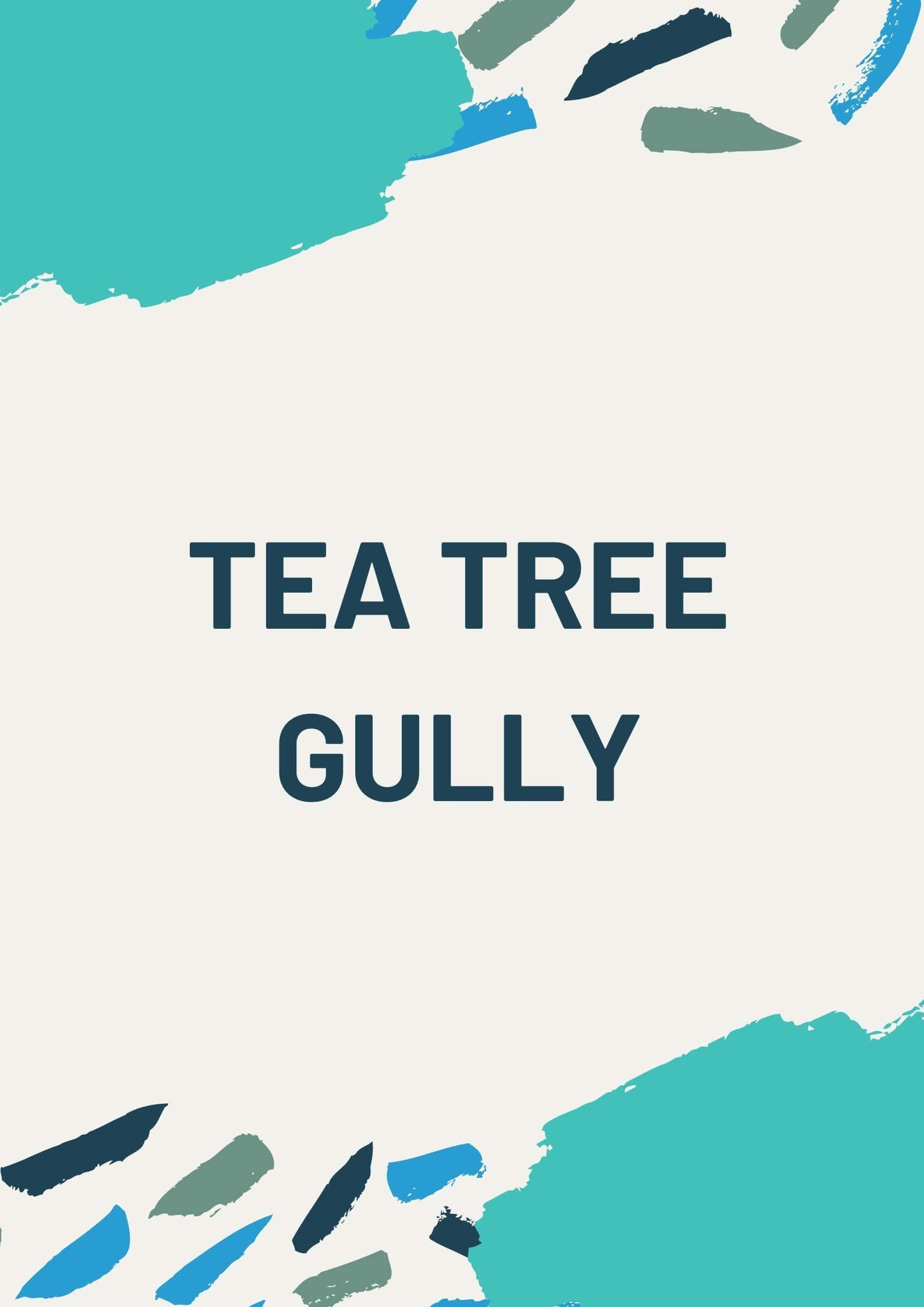 tea tree gully cover FS